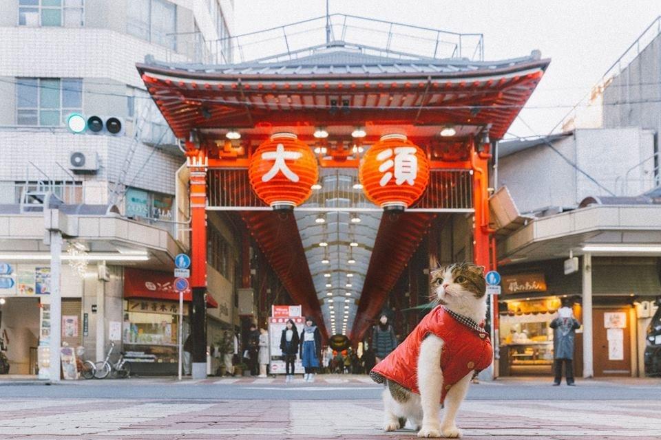 【懶人包行程】 名古屋市內一日遊